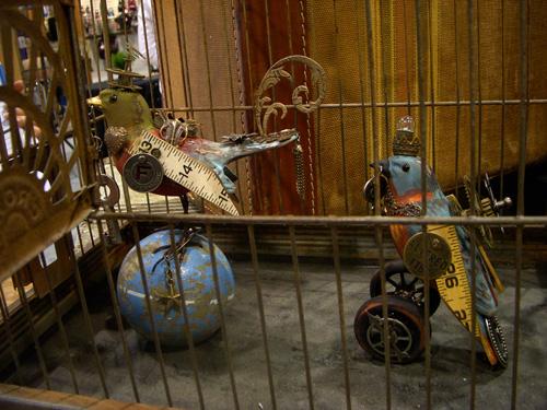 Tim's birds
