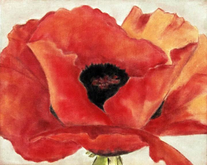 Panpastel poppy