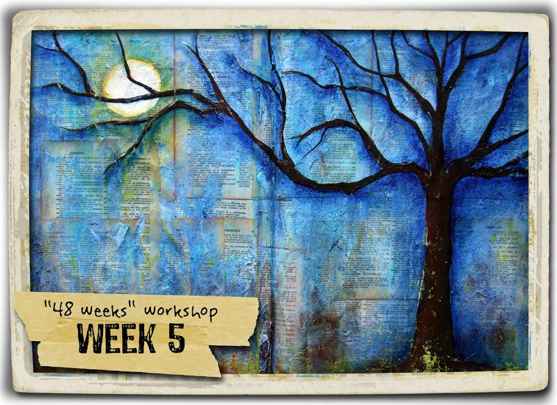 Week 5 + frame