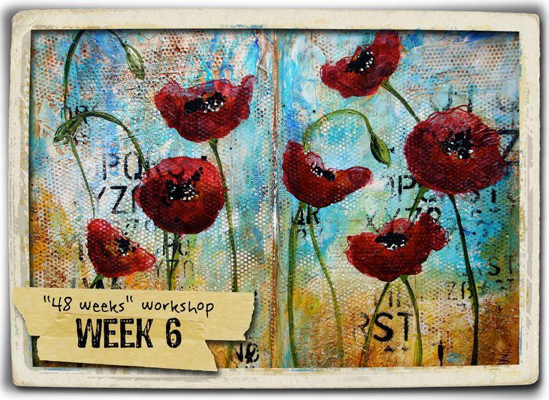 Week 6 + frame
