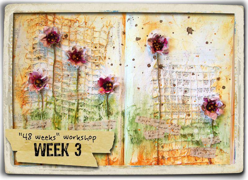 Week 3 + frame