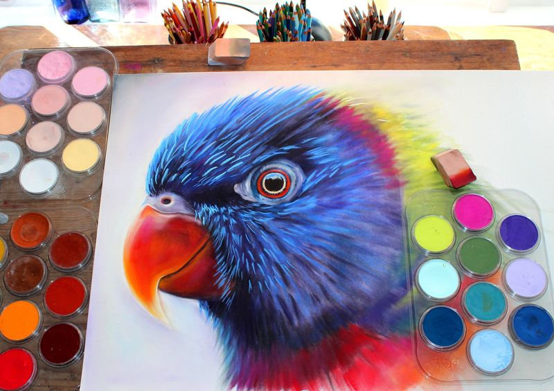 Rainbow_lorikeet_step-by-step_1