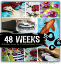 48 weeks logo no quote-
