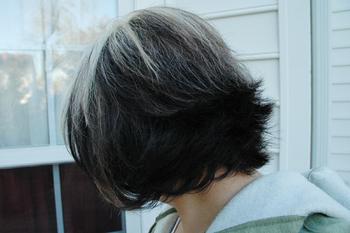 Hair_back5